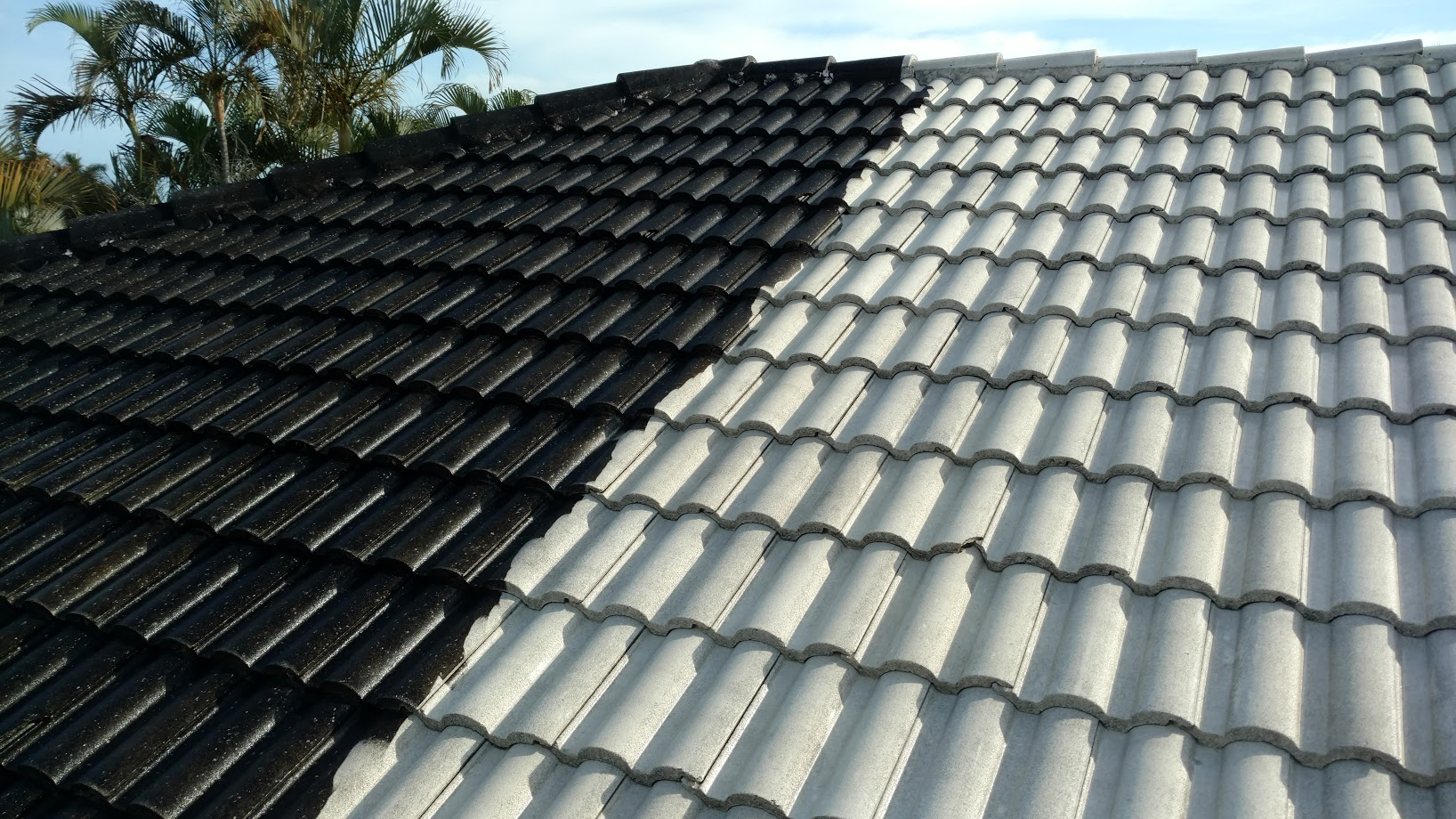 services roofs